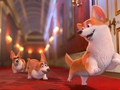 Jack Whitehall and Julie Walters voice the charming new trailer for The Queen's Corgi