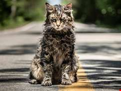 Fright-filled second trailer for new take on Stephen King's Pet Sematary unveiled