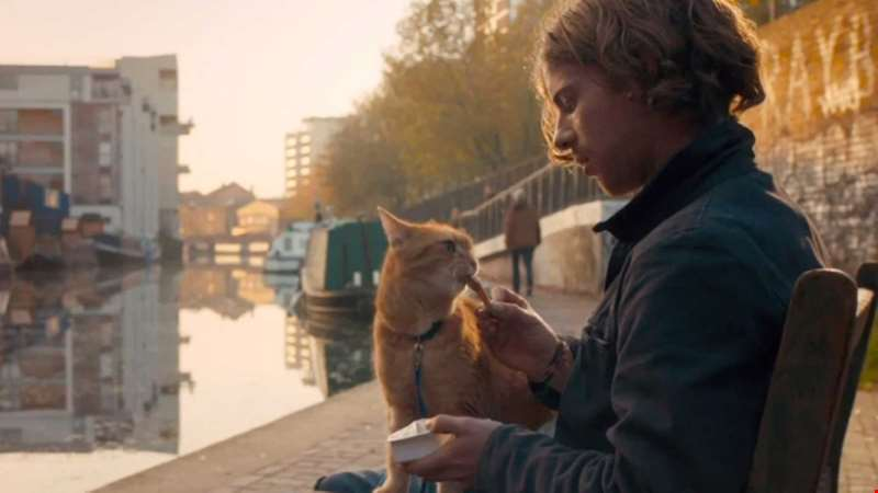 Sequel to A Street Cat Named Bob goes into production