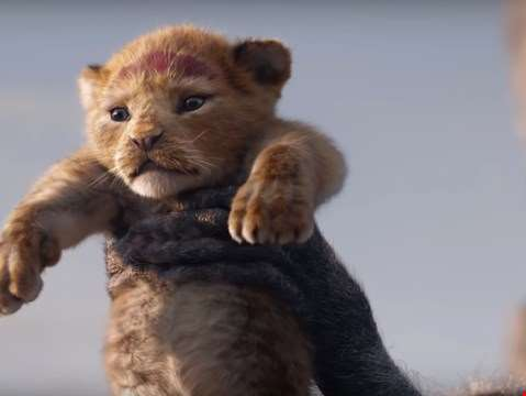 The Lion King - Five Reasons You'll Love It