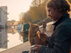 Watch the first trailer for A Christmas Gift From Bob, sequel to A Street Cat Named Bob