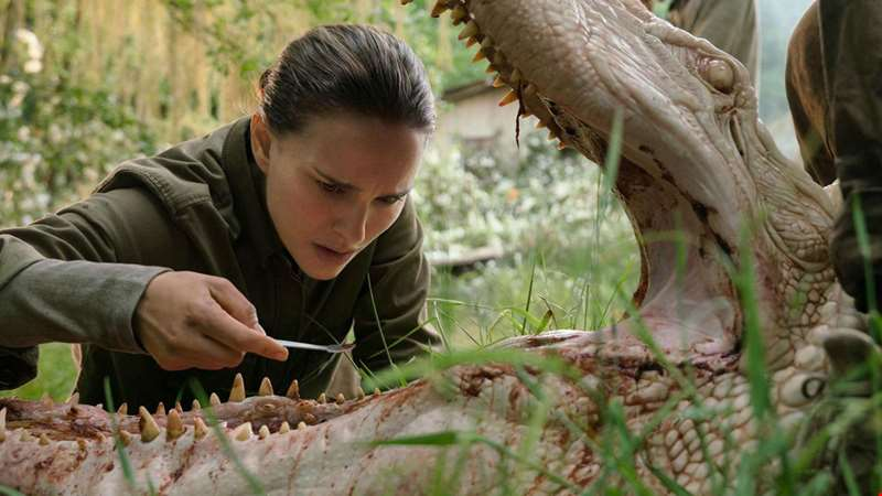Annihilation: What You Need To Know