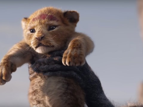 Watch the stunning first trailer for Disney's The Lion King