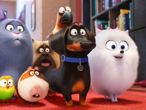 Sparky first trailer for The Secret Life Of Pets 2 drops online