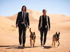 John Wick: Chapter 3 – Parabellum - Five Reasons You'll Love It
