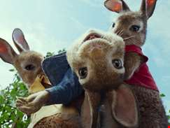 Peter Rabbit 2 delayed until August over coronavirus fears