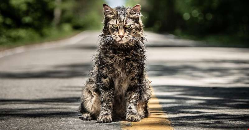 Terrifying final trailer for new take on Stephen King's Pet Sematary unveiled