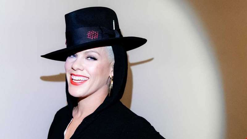 P!nk's Hurts 2B Human: What You Need To Know